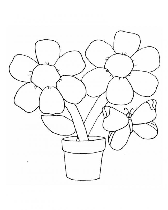 Tranh tô màu chậu hoa sinh động nhất