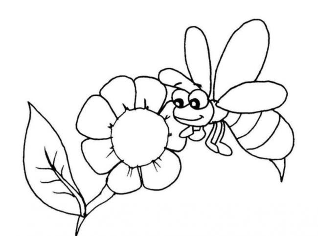 Tranh tô màu bông hoa và chị ong nâu