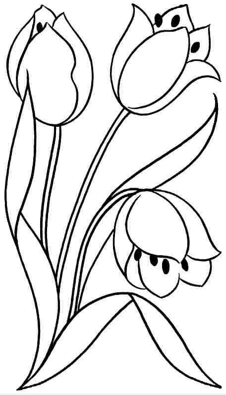 Tranh tô màu hoa tulip cho bé gái 8 tuổi