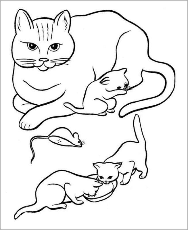 Tranh tô màu những chú mèo đáng yêu