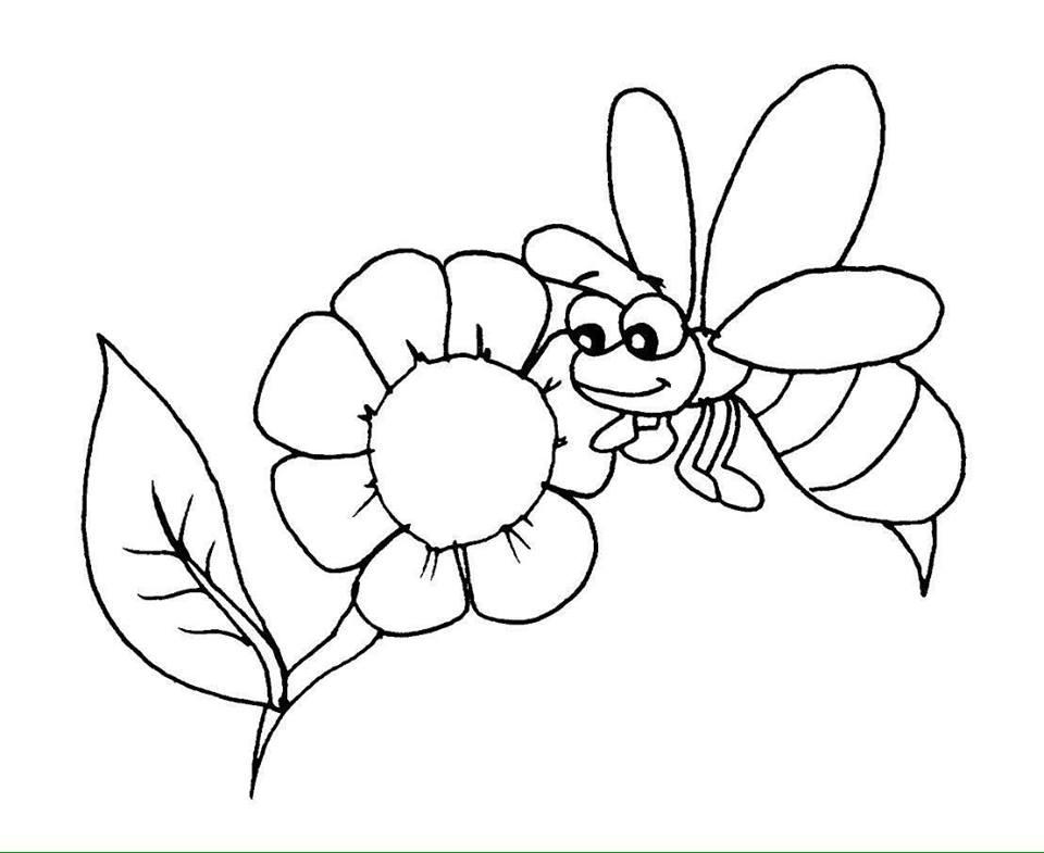 tranh tô màu chú ong chăm chỉ siêu đáng yêu dành cho bé tập tô